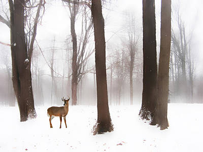 As Winter Calls Print by Jessica Jenney