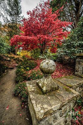 Garden Digital Art - Autumn Path by Adrian Evans