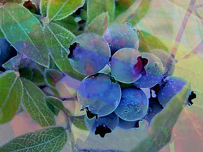 Design With Photograph - Berry Beautiful by Shirley Sirois