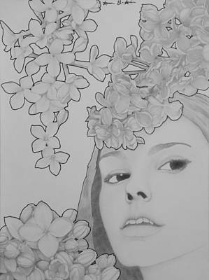 Lilac Drawing - Blooming Girl Lilac  by Aaron El-Amin