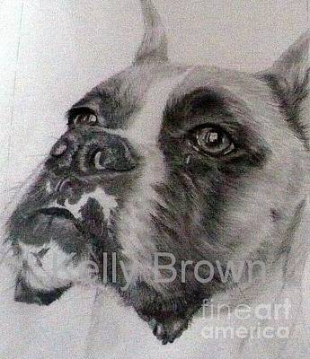 Boxer Dog Art Drawing - Boxer by Kelly Brown