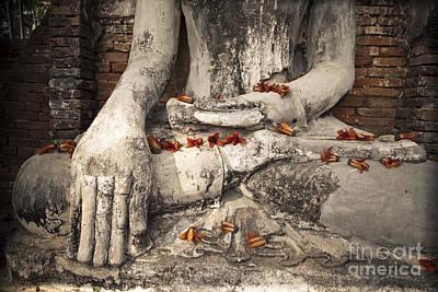 Buddha Print by Maria Heyens