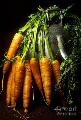 Carrot Photograph - Carrots by Bernard Jaubert