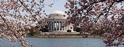 Jefferson Memorial Photograph - Cherry Blossom Trees In The Tidal Basin by Panoramic Images