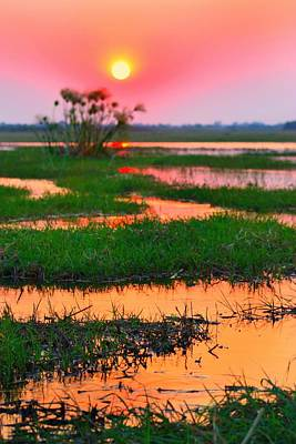 Photograph - Chobe River Sunset by Amanda Stadther