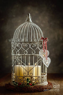 Bird Cages Photograph - Christmas Candles by Amanda Elwell