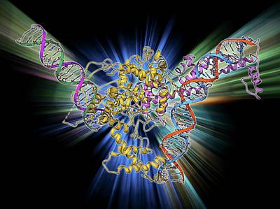 Molecular Structure Photograph - Chromatin Remodelling Factor And Dna by Laguna Design