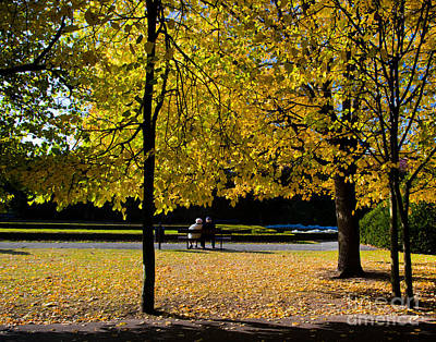 Autumnal Photograph - Colorful Fall Autumn Park by Michal Bednarek