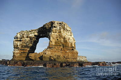 Photograph - Darwin's Arch by Sami Sarkis
