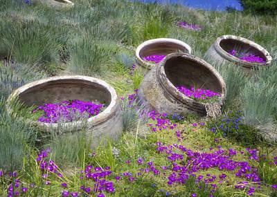 Desert Flowers Print by Joan Carroll