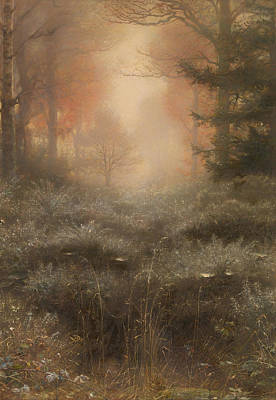 Dew Drenched Furze  Print by Mountain Dreams