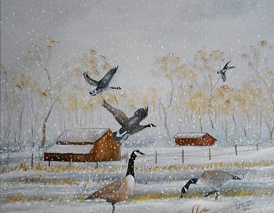 Snow Geese Painting - Dining Out by Al  Johannessen