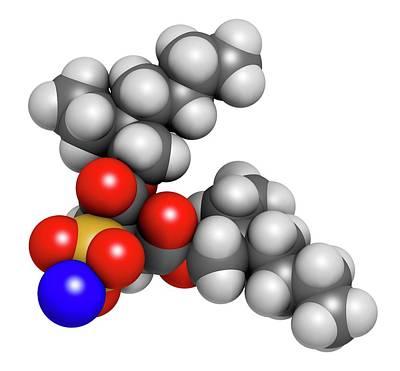 Calcium Photograph - Docusate Sodium Stool Softener Drug by Molekuul