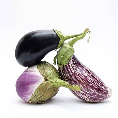 Eggplant Photograph - Eggplants by Bernard Jaubert