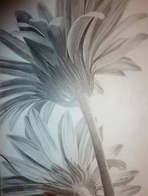 Aster Drawing - Floral Rising  by Christine  Blodgett