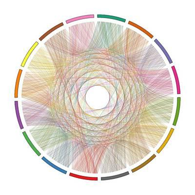 Infinite Digital Art - Flow Of Life Flow Of Pi by Cristian Ilies Vasile