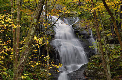 Forest Waterfall In Autumn Print by Stephen  Vecchiotti