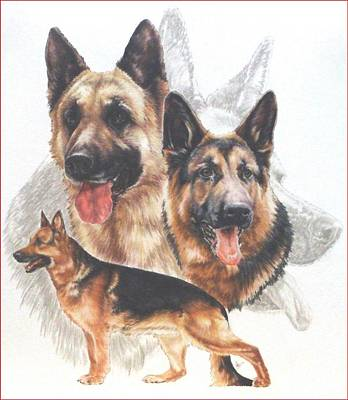German Shepherd With Ghost Image Print by Barbara Keith