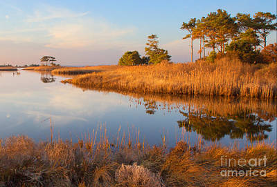 Rehoboth Photograph - Gordons Pond by Robert Pilkington