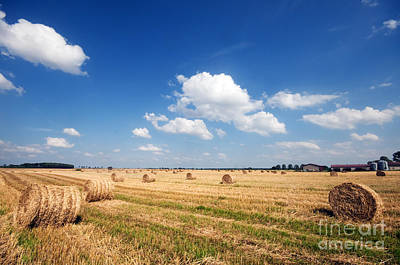 Agriculture Photograph - Haystacks In The Field by Michal Bednarek