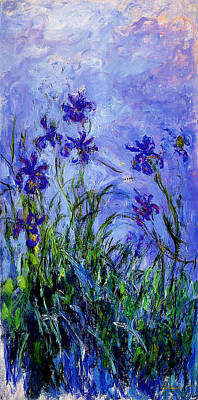 Irises Drawing - Irises by Celestial Images