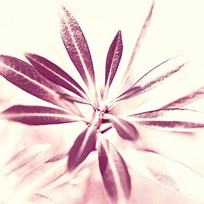 Buy Digital Art - Leaves Dancing In The Sunlight Abstract by Natalie Kinnear