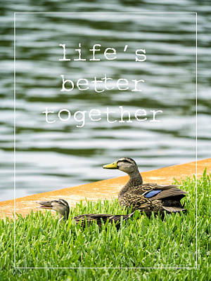 Everglades Photograph - Life's Better Together by Edward Fielding