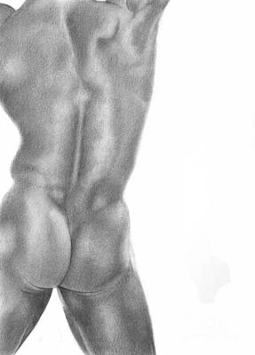 Male Nude Drawing Drawing - Male Nude 3 by Stefano Campitelli