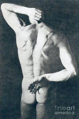 Male Nude Drawing Drawing - Male Nude 5 by Stefano Campitelli