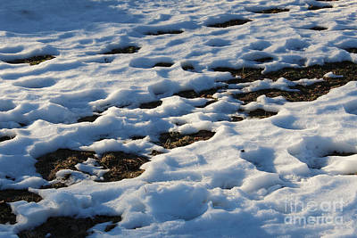 Winter Photograph - Melting Snow On Lawn by Kerstin Ivarsson