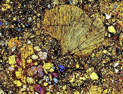 Meteorite Sau 001 Print by Alfred Pasieka