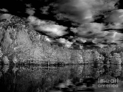 Cypress Stump Photograph - Morning Reflection by Ken Frischkorn