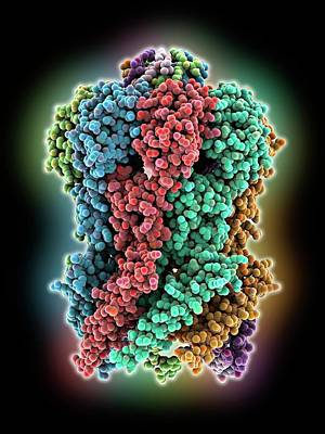 Molecular Structure Photograph - Mscs Ion Channel Protein Structure by Laguna Design
