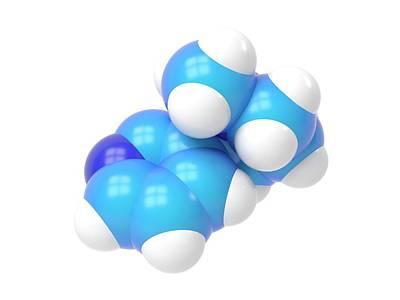 Molecular Model Photograph - Nicotine Molecule by Indigo Molecular Images