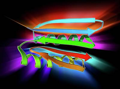 Molecular Structure Photograph - Novel Protein by Laguna Design