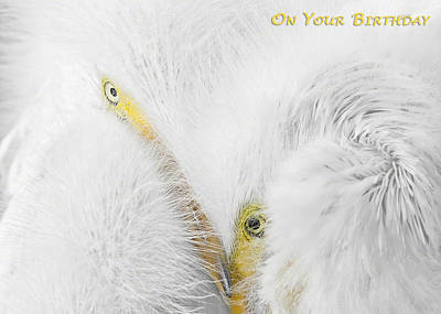 On Your Birthday Print by Dawn Currie