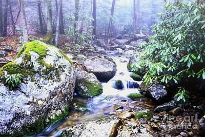 Otter Digital Art - Otter Creek Wilderness by Thomas R Fletcher