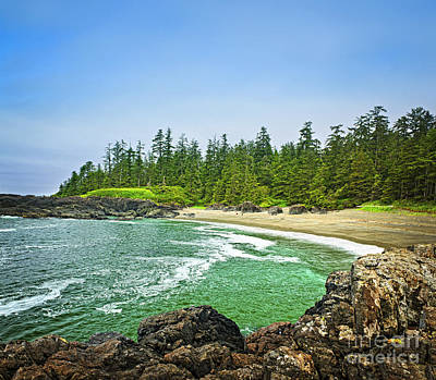 Pristine Photograph - Pacific Ocean Coast On Vancouver Island by Elena Elisseeva