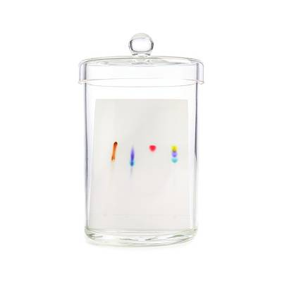Water Filter Photograph - Paper Chromatography by Science Photo Library