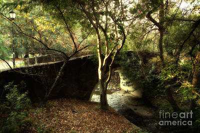 Cal Bears Photograph - Pedestrian Bridge And Strawberry Creek  . 7d10152 by Wingsdomain Art and Photography