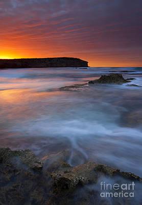 Kangaroo Photograph - Pennington Dawn by Mike  Dawson