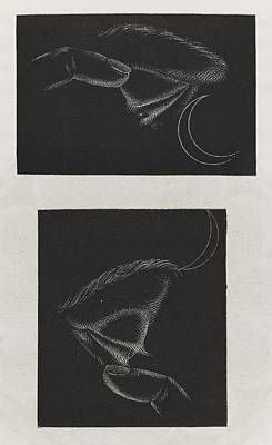 Phosphenes And Retinal Images Print by King's College London