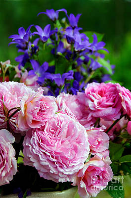 Bluebells Photograph - Pink Roses And Bluebells by Gry Thunes