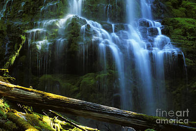 Proxy Falls Oregon Print by Bob Christopher