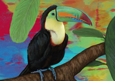 Toucan Mixed Media - Rainforest Bird - Keel Billed Toucan Stylised Pop Art Drawing Potrait Poser by Kim Wang