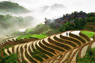 Farmland Photograph - Rice Terraces by King Wu