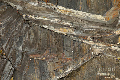Rock  Print by Graham Foulkes