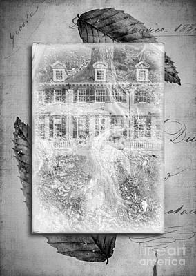 Roots Print by Edward Fielding