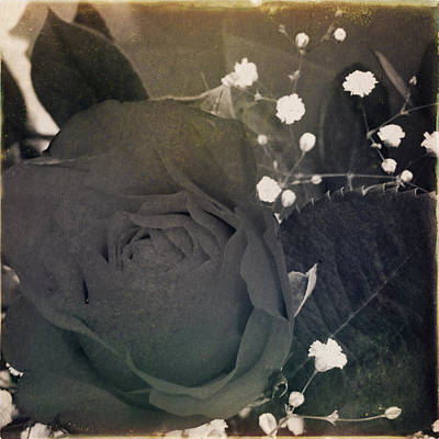 Sepia Flowers Photograph - Rose by Les Cunliffe