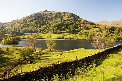 Dry Lake Photograph - Rydal Water In Spring by Ashley Cooper